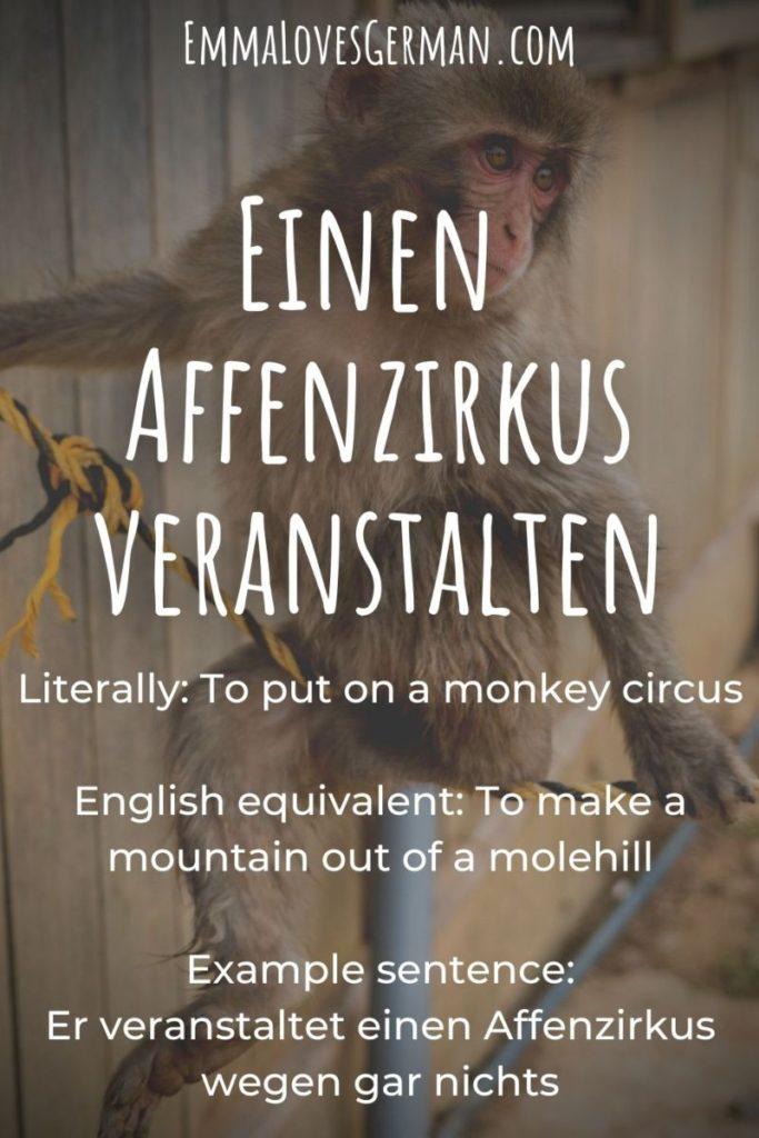 German idioms Einen Affenzirkus veranstalten