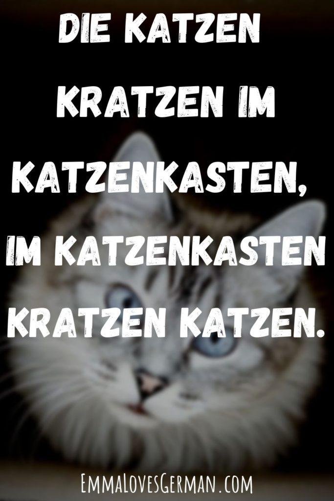 die Katzen german tongue twister