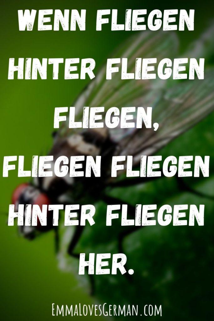 wenn fliegen german tongue twister