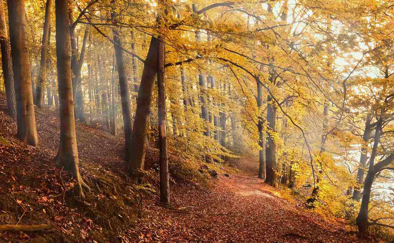 months seasons in german